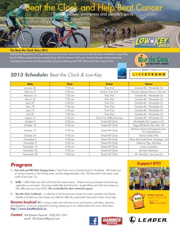 BTC Flyer 2013